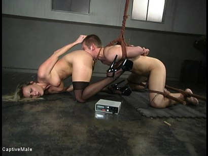 Photo number 5 from Shocking Discipline shot for Captive Male on Kink.com. Featuring Harmony and Danny Wylde in hardcore BDSM & Fetish porn.