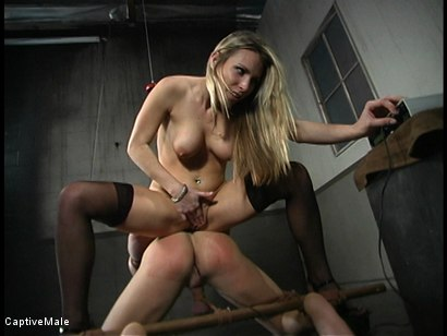 Photo number 7 from Shocking Discipline shot for Captive Male on Kink.com. Featuring Harmony and Danny Wylde in hardcore BDSM & Fetish porn.