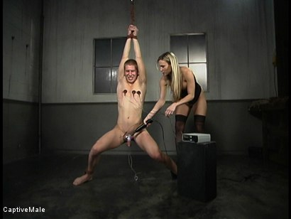 Photo number 9 from Shocking Discipline shot for Captive Male on Kink.com. Featuring Harmony and Danny Wylde in hardcore BDSM & Fetish porn.