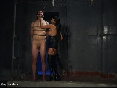 Photo number 2 from Demanding Mistress shot for Captive Male on Kink.com. Featuring Servant and shy love in hardcore BDSM & Fetish porn.