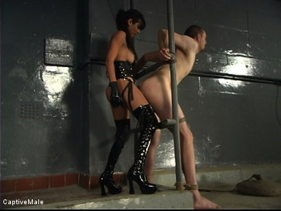 Photo number 12 from Demanding Mistress shot for Captive Male on Kink.com. Featuring Servant and shy love in hardcore BDSM & Fetish porn.