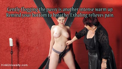 Photo number 18 from Sensual Flogging 101 - with Cleo Dubois shot for Kink University on Kink.com. Featuring Nerine Mechanique and Cleo Dubois in hardcore BDSM & Fetish porn.