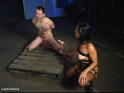 Photo number 12 from Sandra Romain's Captive Cargo Submits to Inspections shot for Captive Male on Kink.com. Featuring Oscar Beyer and Sandra Romain in hardcore BDSM & Fetish porn.