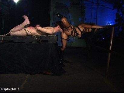 Photo number 3 from Sandra Romain's Captive Cargo Submits to Inspections shot for Captive Male on Kink.com. Featuring Oscar Beyer and Sandra Romain in hardcore BDSM & Fetish porn.