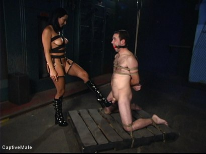 Photo number 5 from Sandra Romain's Captive Cargo Submits to Inspections shot for Captive Male on Kink.com. Featuring Oscar Beyer and Sandra Romain in hardcore BDSM & Fetish porn.