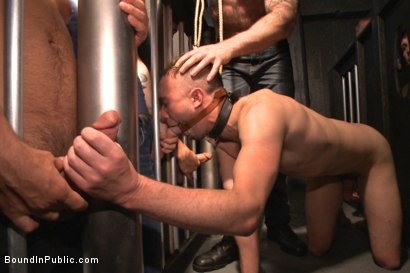 Photo number 5 from Shut up and take our cocks you fucking loser! shot for Bound in Public on Kink.com. Featuring Aleks Buldocek, Kirk Cummings and Dominic Pacifico in hardcore BDSM & Fetish porn.