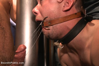 Photo number 6 from Shut up and take our cocks you fucking loser! shot for Bound in Public on Kink.com. Featuring Aleks Buldocek, Kirk Cummings and Dominic Pacifico in hardcore BDSM & Fetish porn.