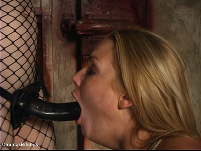 Photo number 13 from Flower Tucci Destroyed In Grueling Bondage shot for Chantas Bitches on Kink.com. Featuring Flower Tucci in hardcore BDSM & Fetish porn.