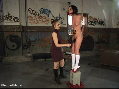 Photo number 4 from Punishment And More Punishment shot for Chantas Bitches on Kink.com. Featuring Veronica Jett in hardcore BDSM & Fetish porn.