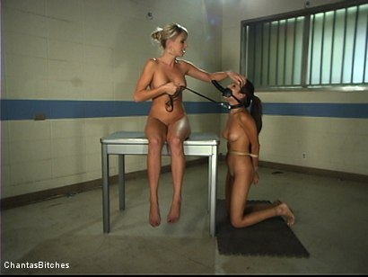 Photo number 12 from Treating Miss Daisy shot for Chantas Bitches on Kink.com. Featuring Daisy Marie and Audrey Leigh in hardcore BDSM & Fetish porn.