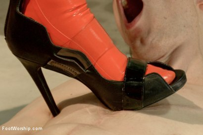 Photo number 6 from Foot Humiliation, Trampling and Latex shot for Foot Worship on Kink.com. Featuring Lyla Storm and Owen Gray in hardcore BDSM & Fetish porn.