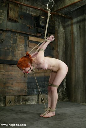 Photo number 10 from Calico shot for Hogtied on Kink.com. Featuring Calico in hardcore BDSM & Fetish porn.