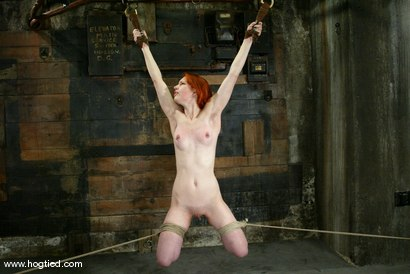 Photo number 14 from Calico shot for Hogtied on Kink.com. Featuring Calico in hardcore BDSM & Fetish porn.