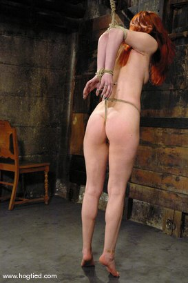 Photo number 3 from Calico shot for Hogtied on Kink.com. Featuring Calico in hardcore BDSM & Fetish porn.