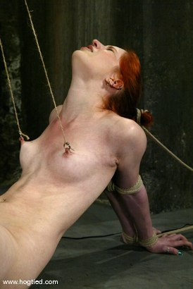 Photo number 5 from Calico shot for Hogtied on Kink.com. Featuring Calico in hardcore BDSM & Fetish porn.