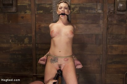 Photo number 12 from Destroying Dahlia shot for Hogtied on Kink.com. Featuring Sgt. Major and Dahlia Sky in hardcore BDSM & Fetish porn.
