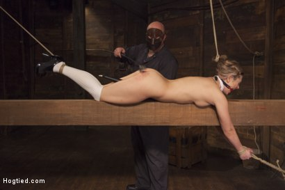Photo number 2 from Destroying Dahlia shot for Hogtied on Kink.com. Featuring Sgt. Major and Dahlia Sky in hardcore BDSM & Fetish porn.