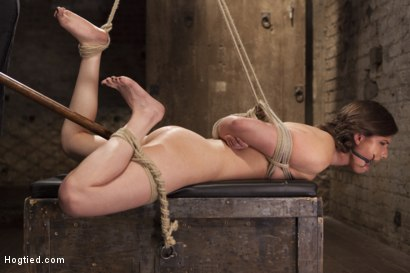 Photo number 6 from Casey Calvert Anal Hooked and Gagged shot for Hogtied on Kink.com. Featuring Sgt. Major and Casey Calvert in hardcore BDSM & Fetish porn.