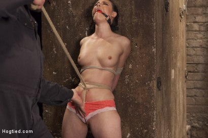 Photo number 2 from Casey Calvert Anal Hooked and Gagged shot for Hogtied on Kink.com. Featuring Sgt. Major and Casey Calvert in hardcore BDSM & Fetish porn.