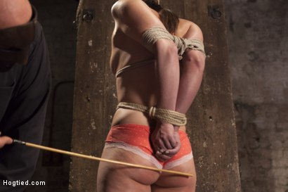 Photo number 3 from Casey Calvert Anal Hooked and Gagged shot for Hogtied on Kink.com. Featuring Sgt. Major and Casey Calvert in hardcore BDSM & Fetish porn.