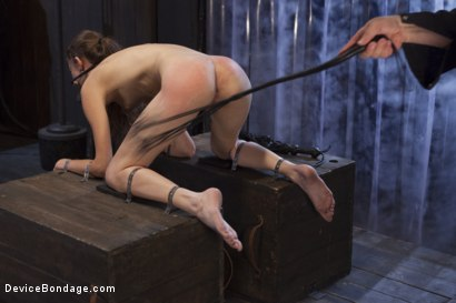 Photo number 14 from Newcomer Loses Her Innocence shot for Device Bondage on Kink.com. Featuring Sgt. Major and Willow Hayes in hardcore BDSM & Fetish porn.
