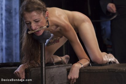 Photo number 9 from Newcomer Loses Her Innocence shot for Device Bondage on Kink.com. Featuring Sgt. Major and Willow Hayes in hardcore BDSM & Fetish porn.
