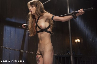 Photo number 6 from Newcomer Loses Her Innocence shot for Device Bondage on Kink.com. Featuring Sgt. Major and Willow Hayes in hardcore BDSM & Fetish porn.
