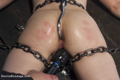 Photo number 9 from Girl Next Door is Bound and Tormented Like a Whore! shot for Device Bondage on Kink.com. Featuring Sgt. Major and Amy Faye in hardcore BDSM & Fetish porn.