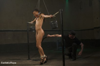 Photo number 2 from Wreaking Havoc on Nikki Darling shot for Sadistic Rope on Kink.com. Featuring Nikki Darling in hardcore BDSM & Fetish porn.