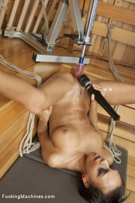 Photo number 13 from Janice Griffith - Up & Coming Starlet Gives her Pussy to the Machines shot for Fucking Machines on Kink.com. Featuring Janice Griffith in hardcore BDSM & Fetish porn.