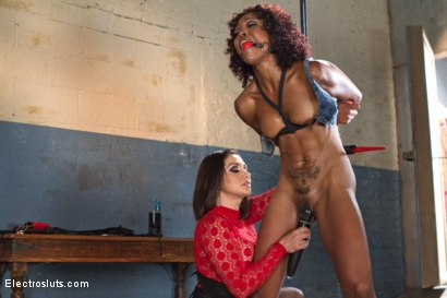 Photo number 16 from Slut Test: The Beautiful Lotus Lain shot for Electro Sluts on Kink.com. Featuring Lea Lexis and Lotus Lain in hardcore BDSM & Fetish porn.