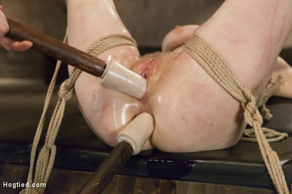 Photo number 10 from Penny Pax Gagged and Double Stuffed shot for Hogtied on Kink.com. Featuring Penny Pax in hardcore BDSM & Fetish porn.
