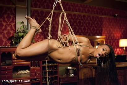 Photo number 11 from Anal Virgin Trained to Take It by Hot MILF Slave shot for The Upper Floor on Kink.com. Featuring Bill Bailey, Syren de Mer and Freya French in hardcore BDSM & Fetish porn.