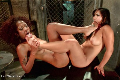 Photo number 14 from Lotus Lain and Mia Li are Hot FOR FEET AND PUSSY! shot for Foot Worship on Kink.com. Featuring Lotus Lain and Mia Little in hardcore BDSM & Fetish porn.