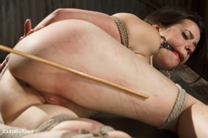 Photo number 13 from Newcomer Pays the Price shot for Sadistic Rope on Kink.com. Featuring Freya French in hardcore BDSM & Fetish porn.
