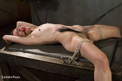 Photo number 14 from Newcomer Pays the Price shot for Sadistic Rope on Kink.com. Featuring Freya French in hardcore BDSM & Fetish porn.