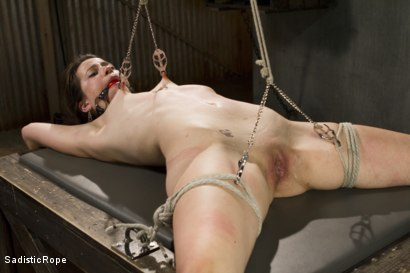 Photo number 4 from Newcomer Pays the Price shot for Sadistic Rope on Kink.com. Featuring Freya French in hardcore BDSM & Fetish porn.