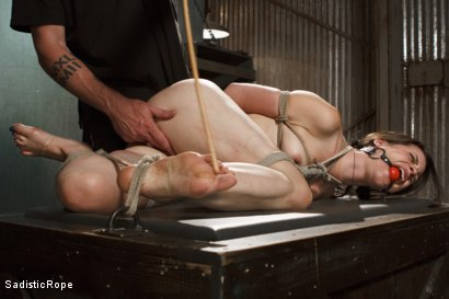 Photo number 7 from Newcomer Pays the Price shot for Sadistic Rope on Kink.com. Featuring Freya French in hardcore BDSM & Fetish porn.