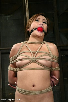 Photo number 10 from Tia Tanaka shot for Hogtied on Kink.com. Featuring Tia Tanaka in hardcore BDSM & Fetish porn.
