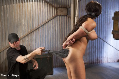 Photo number 2 from Newcomer - Almost Isn't Good Enough, Whore!! shot for Sadistic Rope on Kink.com. Featuring Alexa Pierce in hardcore BDSM & Fetish porn.