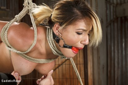 Photo number 4 from Young Latin Pain Slut shot for Sadistic Rope on Kink.com. Featuring Liv Aguilera in hardcore BDSM & Fetish porn.