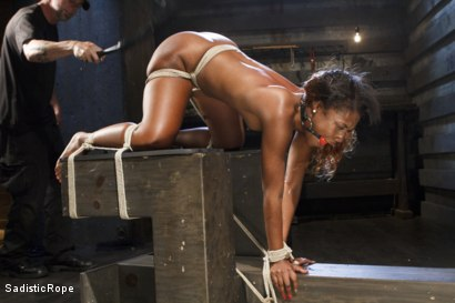 Photo number 9 from Ebony Slut Begs for Brutality shot for Sadistic Rope on Kink.com. Featuring Chanell Heart in hardcore BDSM & Fetish porn.