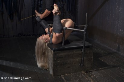 Photo number 14 from Blonde MILF Gets Devastated with Sensory Overload!! shot for Device Bondage on Kink.com. Featuring Holly Heart and Orlando in hardcore BDSM & Fetish porn.