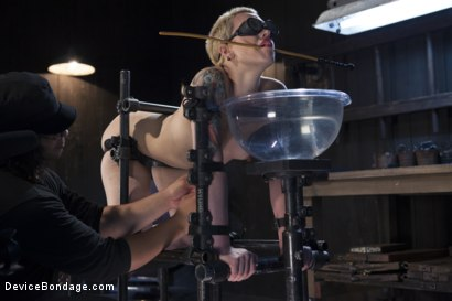 Photo number 11 from Recipe for Disaster shot for Device Bondage on Kink.com. Featuring Orlando and Elizabeth Thorn in hardcore BDSM & Fetish porn.