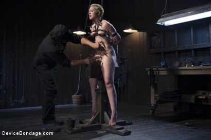 Photo number 7 from Recipe for Disaster shot for Device Bondage on Kink.com. Featuring Orlando and Elizabeth Thorn in hardcore BDSM & Fetish porn.