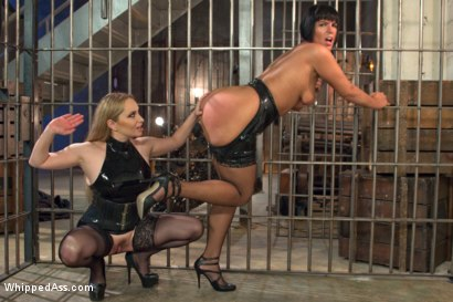 Photo number 14 from Caged Slut shot for Whipped Ass on Kink.com. Featuring Rose Rhapsody and Aiden Starr in hardcore BDSM & Fetish porn.