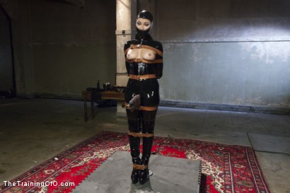Photo number 2 from The Objectification of Dani Daniels shot for The Training Of O on Kink.com. Featuring Dani Daniels and Tommy Pistol in hardcore BDSM & Fetish porn.