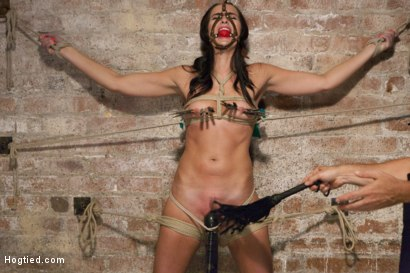 Photo number 4 from Squirting Snatch Roto-Drilled Into Oblivion shot for Hogtied on Kink.com. Featuring Bianca Breeze in hardcore BDSM & Fetish porn.