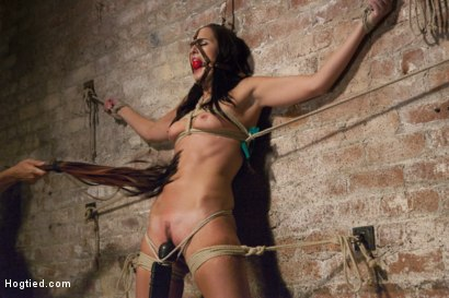 Photo number 3 from Squirting Snatch Roto-Drilled Into Oblivion shot for Hogtied on Kink.com. Featuring Bianca Breeze in hardcore BDSM & Fetish porn.