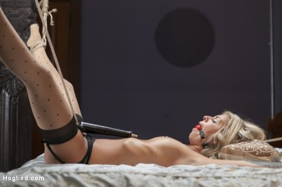 Photo number 12 from Desperate Girlfriend's Bondage Fantasy shot for Hogtied on Kink.com. Featuring Madelyn Monroe in hardcore BDSM & Fetish porn.